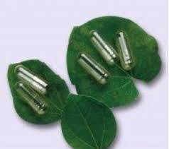 plantcaps